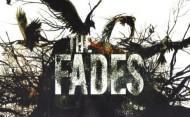 fades-1-650x402